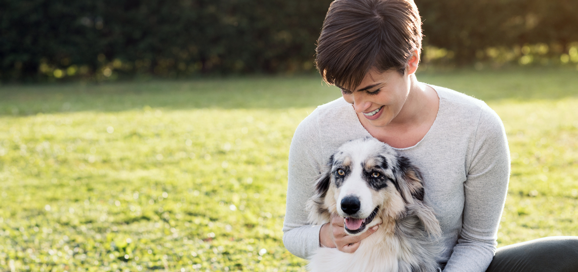 How To Find the Best Pet Sitters in Australia